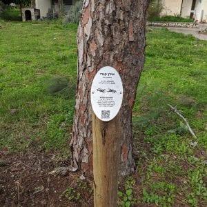 שלטי עצים מנירוסטה בחריטה